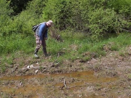 Paweł Lipski eksploruje stanowisko Elaphrus ullrichii