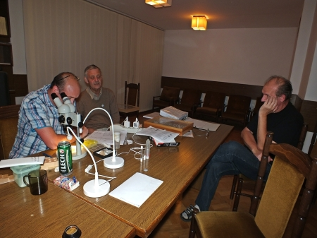 Robert Żórlaski, Boguslaw Soszyńki i Zbyszek Mocarski próbują zidentyfikować dziwną Cheilosię