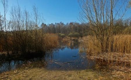 Marzec 2014 - Część użytku zalana była wodą