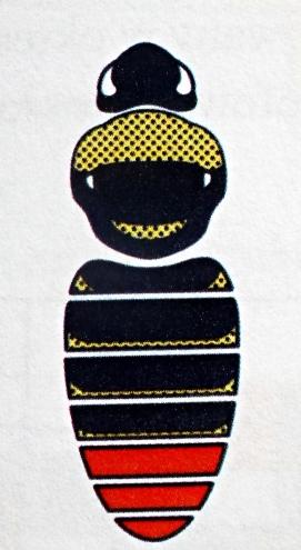 B.rupestris - Samiec